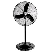 Where to find FAN - 36  Pedestal - Black in Grand Cayman