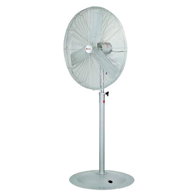 Where to find FAN - 36  Pedestal - White in Grand Cayman
