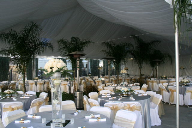 Where to find 40  x 40  Tent Liner in Grand Cayman
