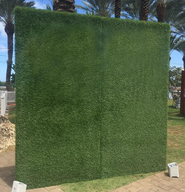 backdrop grass wall 8 foot x 4 foot rentals grand cayman ky where