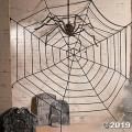 Rental store for Large Spiders Web in Grand Cayman KY